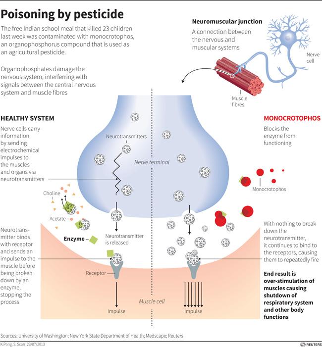 Image result for organophosphate poisoning