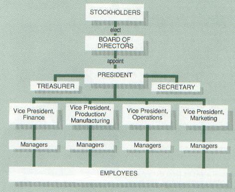 OrganizationalChart