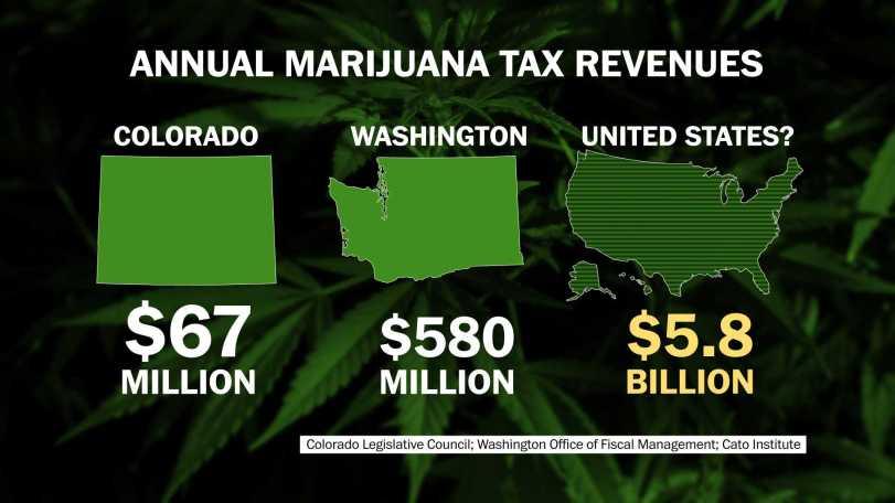 GFX_Weed_TaxB