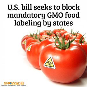 us-congress-koch-backed-congressman-mike-pompeo-consider-blocking-gmo-food-labeling-china-drops-GMO-corn-import