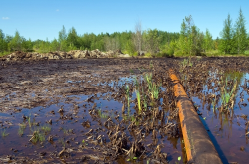 pipeline-vegetation-leak